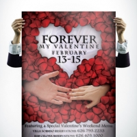 Villa Sorriso Valentine Poster Design